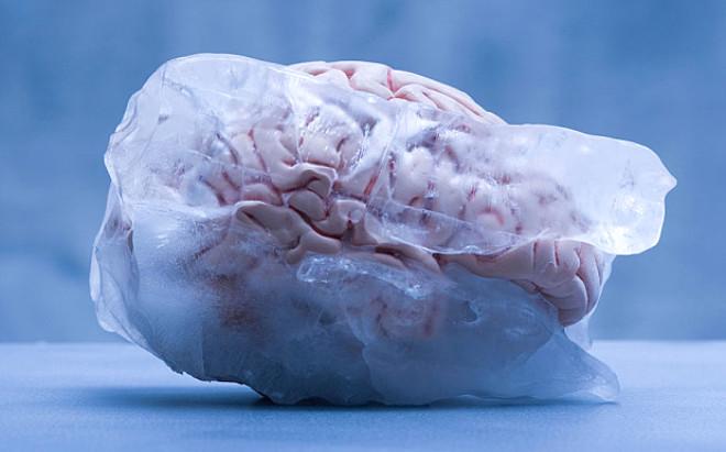 Zenginlerin Yeni Zevkleri: Beyin Dondurma!