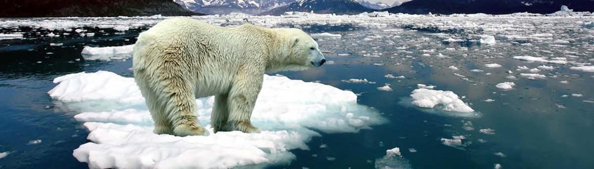 iklim-degisikligi