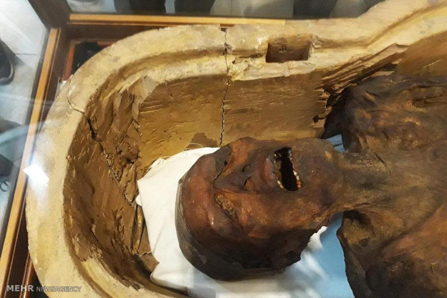Mısırlı Mumyaların Sırrı Çözüldü!